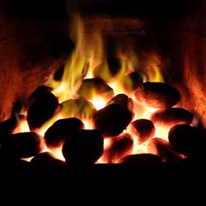 Coal & Solid Fuels